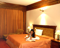 Bed Room-Hotel Mountview, Chandigarh